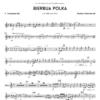 Bierbua Polka Trompete (bb)